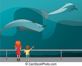 Children in the Oceanarium - The girl and boy watching the...