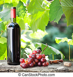 Wine bottle and bunch of grapes - Red wine bottle and bunch...
