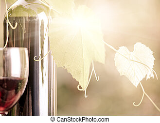 Red wine bottle and vine closeup - Red wine bottle,...