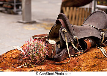 Saddle and cactus on red rock