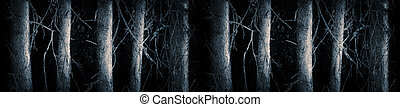 Tree trunks - Row of tree trunks in spooky cold blue forest