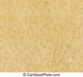 Maple Bird's Eye, wood texture - Wood grain texture. Maple...