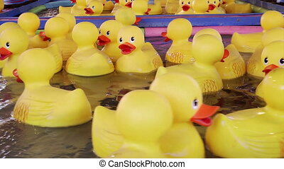 Yellow rubber ducks floating - Yellow rubber ducks, carnival...