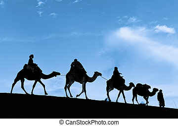 Silhouette of Camel Caravan in the Sahara Desert - Camel...