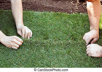 turf is laid by gardener