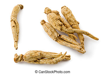 White Ginseng (Panax ginseng) - Composite of several pieces...