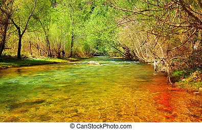 Forest river - Beautiful peaceful landscape with forest...