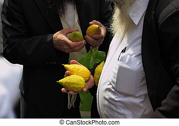 The citron- on the bazaar - Religious Jews chooses ritual...