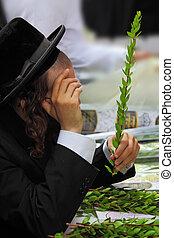 A religious Jew chooses myrtle / Adas / - BNEI-BRAK, ISRAEL...