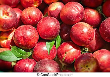 Nectarines - Ripe nectarines ready for sale