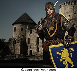 Knight against medieval castle