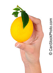 Closeup of a woman's hand holding a lemon
