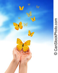 Hands with Butterflies - Hands holding a yellow butterfly...