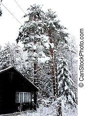 maison, hiver, paysage