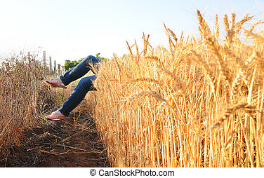 feet coming out of a wheat field
