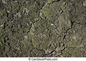 Not cultivated soil background