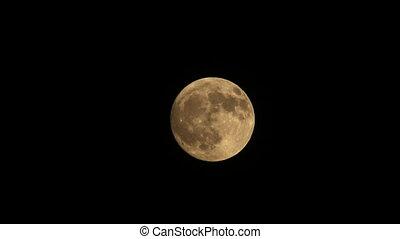 Full moon   - Full moon