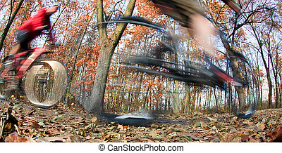 Bicycle riding in a city park on a lovely autumn/fall day