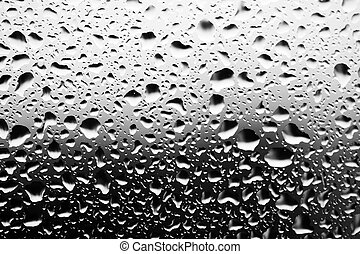 water droplets closeup, monochrome