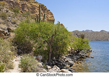 Saguaro Lake, Arizona - Saguaro Lake is located within the...