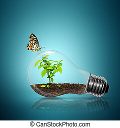 Bulb light with tree inside have butterfly on blue...