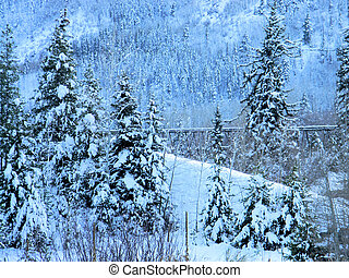 Tressle through the Trees - Old wooden tressle snow covered...