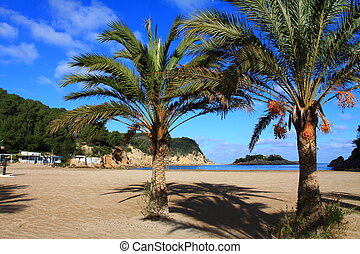 Beautiful small bay in Ibiza, Baleares Island, Spain.