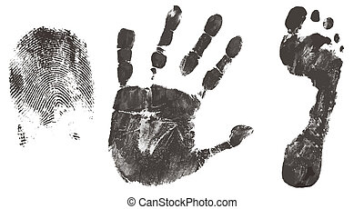 Finger, hand and feet print isolated on white, vector...