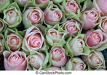 soft pink green roses - Floral arrangement with soft pink...