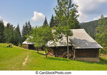 historic wooden houses