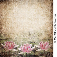 Water Lily on dirty grunge textured background