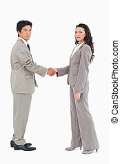 Side view of businesspeople shaking hands
