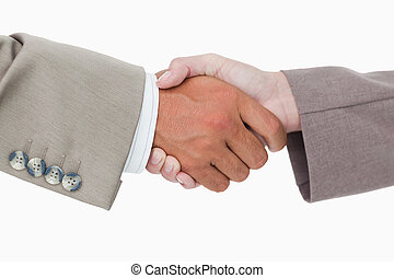 Side view of business peoples hands shaking