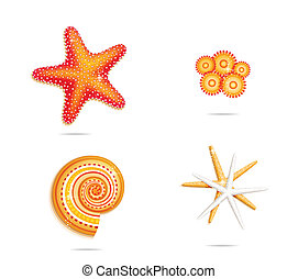 tropical sea stars symbols set on the white