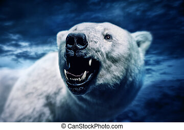 Angry polar bear with sharp teeth