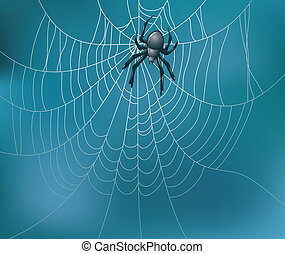 vector spider and web