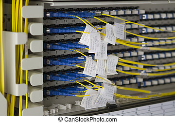 Bunch of yellow fiberoptic cables with blue connectors...