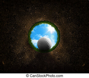 Golf ball falling into the cup - Golf ball falling down into...