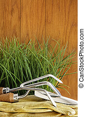 Garden tools with grass on wood background