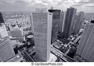 Shinjuku Tokyo Skyline - buildings in Shinjuku, Tokyo,...