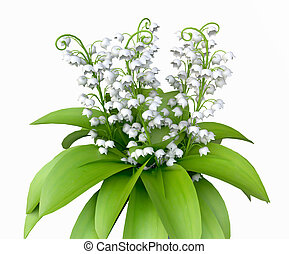 Lily of the Valley - Isolated Lily of the Valley Bouquet in...