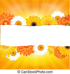 Colorful Gerber Card With Paper
