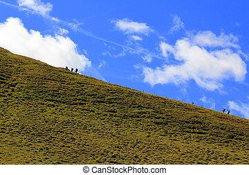 people walking in mountains, green grass and cloudy sky