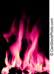 pink and white open fire flames - bright pink flames on an...
