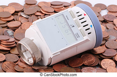 thermostat - A programmable thermostat on one-cent euro...
