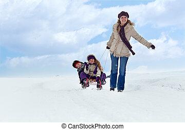 divertimento,  sleigh, inverno