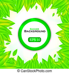 Green leaf background with place for your message. Vector illustration