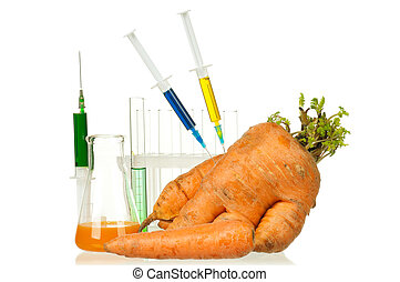 Genetically modified organism - ripe carrot with syringes...