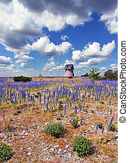 Purple Flower Countryside - Countryside landscape with...