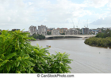 Brisbane River and the Captain Cook - Kangaroo Point trees...